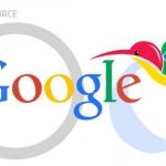 How Google's Hummingbird Will Redefine the Future of SEO